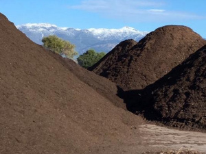 Vendita Compost e Substrato